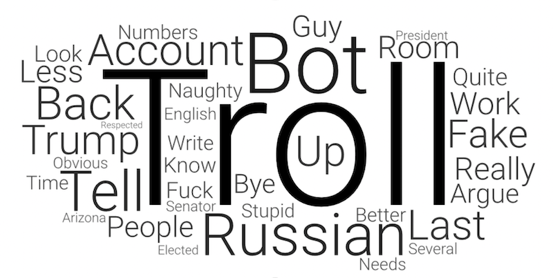 Word cloud of the most used words in comments accusing someone of trolling