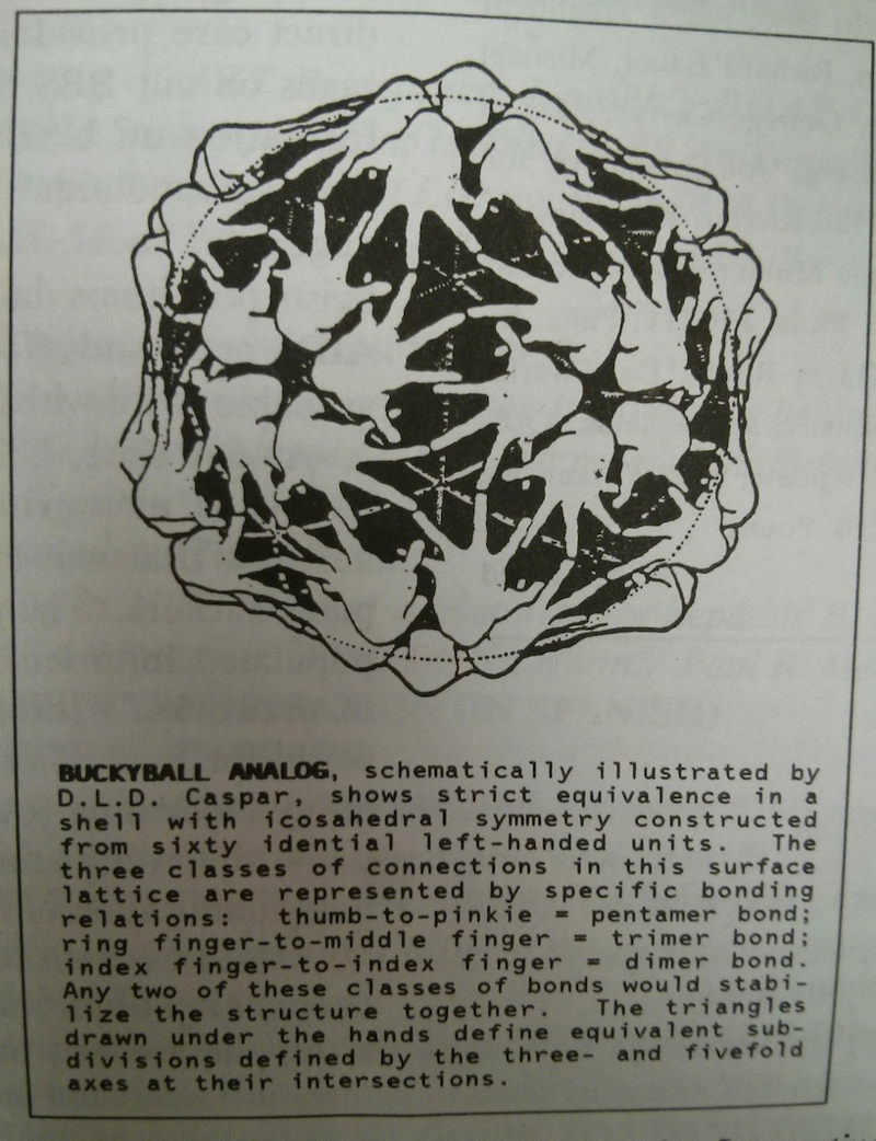 Detail of the Bucky Ball in the Critical Path AIDS Project Newsletter