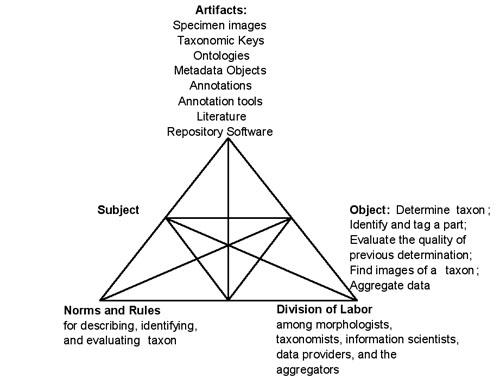 Figure 2: Morphbank's activity system