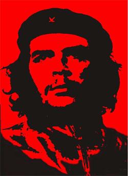 Figure 2a: Che Guevara