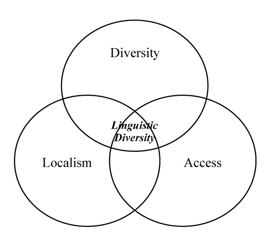 Intersections of diversity, localism, and access principles in Internet governance