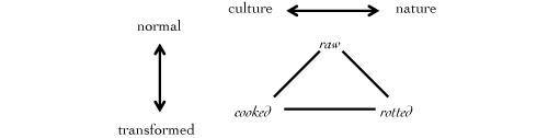Levi-Strauss culinary triangle