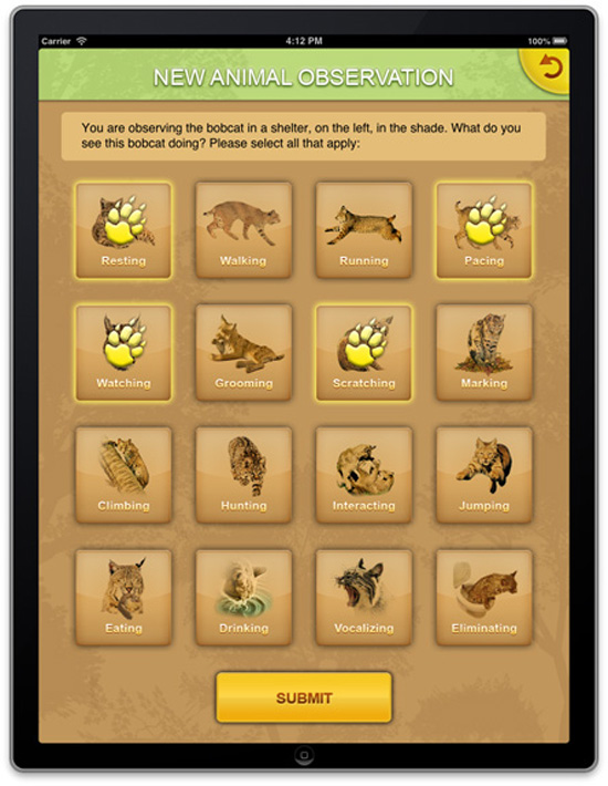 iPad animal observation worksheet #2