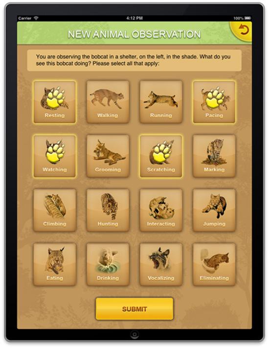 iPad animal observation worksheet #2