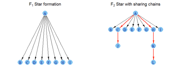 Example information flow topology