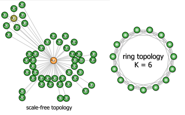 Two network topologies were used in our experiments