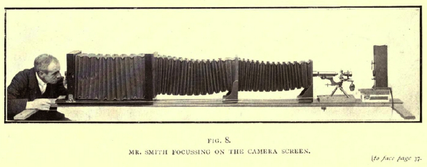 Illustration from the book Nature through microscope and camera (1909), by Richard Kerr