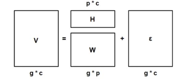 Matrix decomposition for automatic persona generation