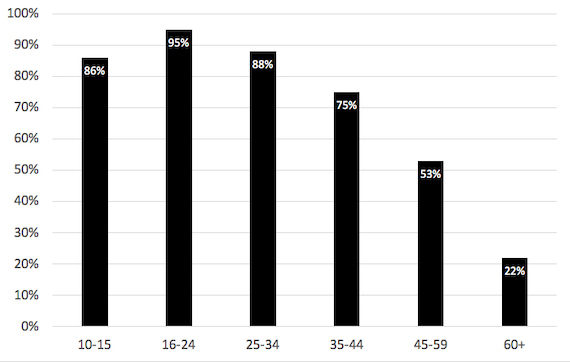 Percent of individuals accessing the Internet by age group